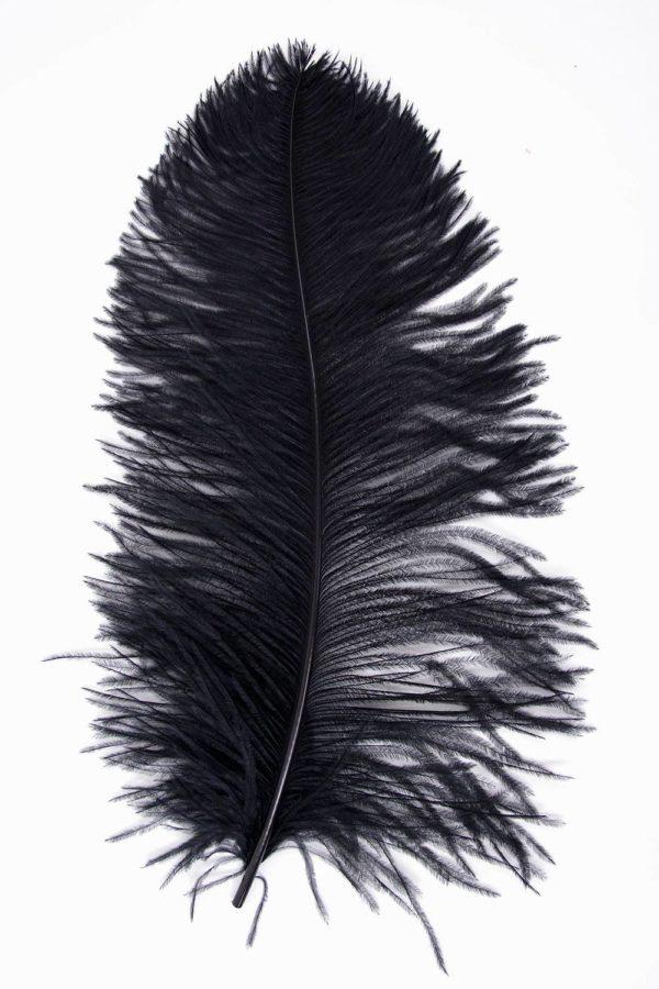 Straussenfeder Mittel 40-50cm schwarz